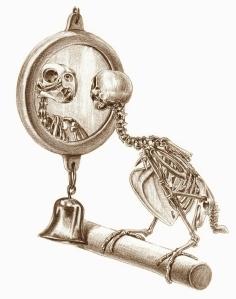 Budgie Skeleton - Katrina van Grouw